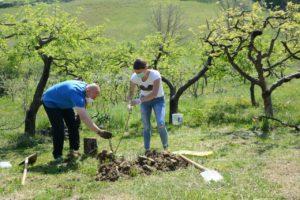 Sadnjom drveća članovi HNS-a obilježili Dan planeta Zemlje